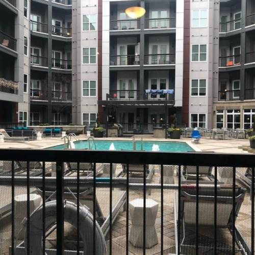 ✨HALF OFF APP AND ADMIN✨ This weekend only!! Apply for this STUNNING 1BR apartment for only $75! This poolside unit is 736 sq ft and rents for $1524 per month! #clt #uptownclt #charlottenc #cltapartments